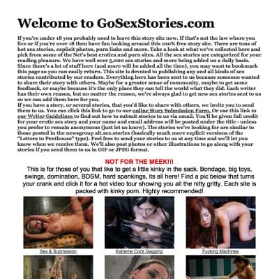 gosexstories.com